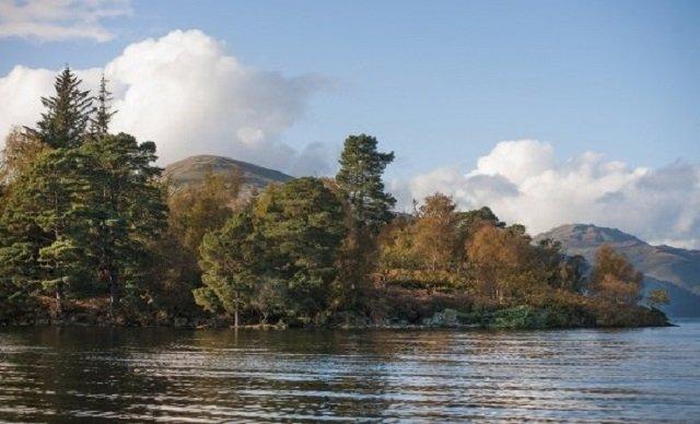 У Шотландії продають острів за ціною квартири - фото 415402