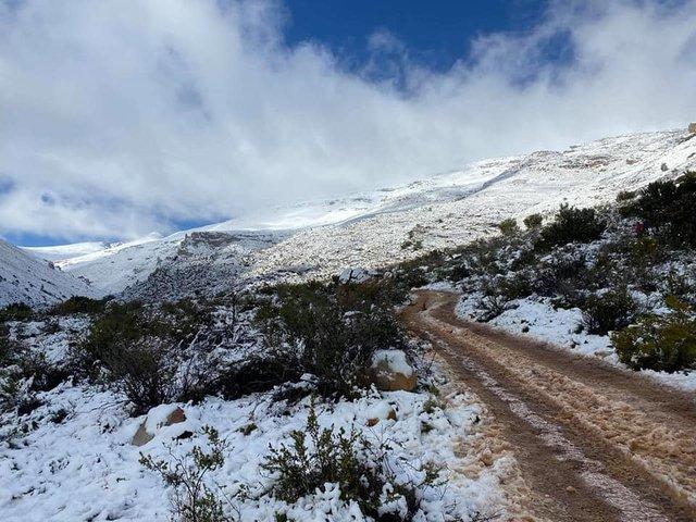 Південну Африку засипало снігом: вражаючі кадри - фото 416075