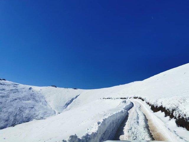 Південну Африку засипало снігом: вражаючі кадри - фото 416080