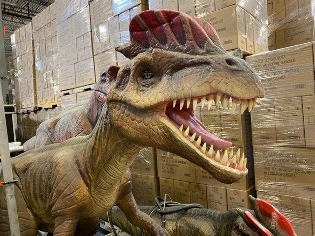 Парк Юрського періоду у себе вдома: в Канаді продають реалістичні фігури динозаврів - фото 416307