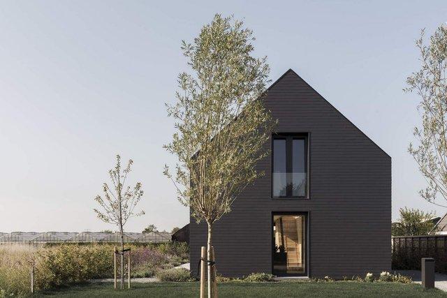 Як виглядає сучасна сімейна вілла у Нідерландах: фото - фото 418776