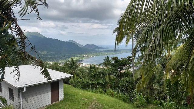 Названий острів з найбільшим розмаїттям рослин у світі - фото 419996