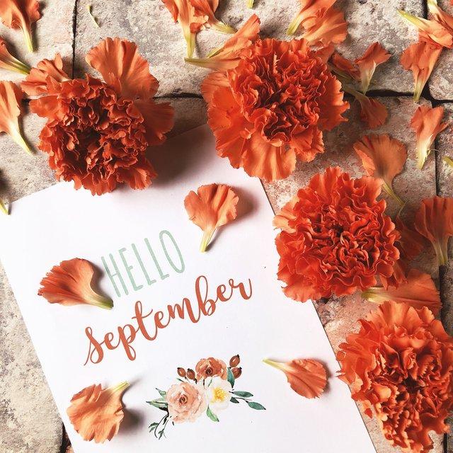 Цитати про осінь: гарні вислови та афоризми про осінню пору українською - фото 422921