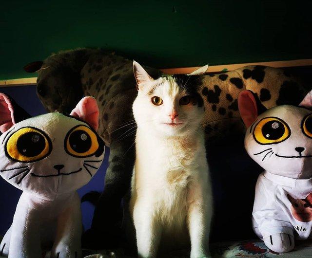 Кумедний кіт прославився завдяки широкій посмішці: веселі кадри - фото 423334