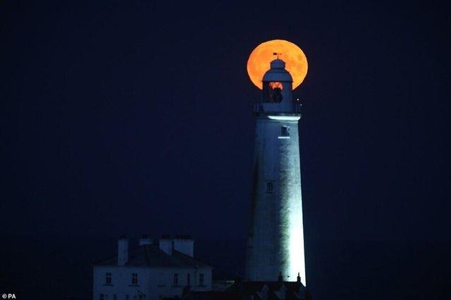 Кукурудзяний місяць: з'явилися яскраві знімки рідкісного явища - фото 423542