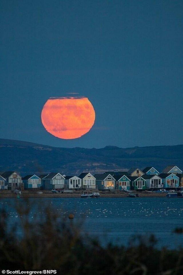Кукурудзяний місяць: з'явилися яскраві знімки рідкісного явища - фото 423544