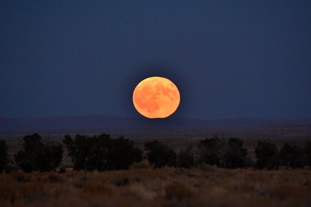 Кукурудзяний місяць: з'явилися яскраві знімки рідкісного явища - фото 423547