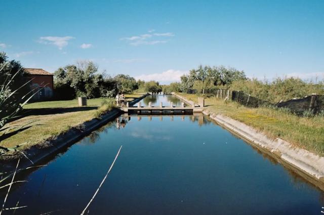 В Італії пропонують орендувати острів за 3 тисячі гривень - фото 423707