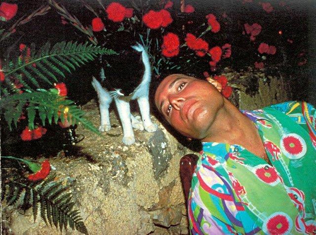 День народження Фредді Мерк'юрі: рідкісні кадри з життя легендарного музиканта - фото 423955