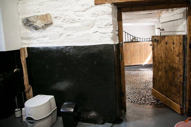 У Великобританії відкрився готель, в якому можна провести ніч в стійлі з кіньми - фото 424046