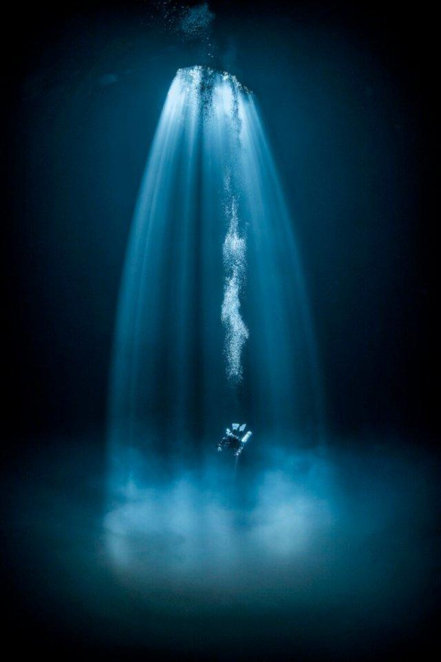 Названі найкращі підводні знімки 2020 року: зачаровує - фото 426257