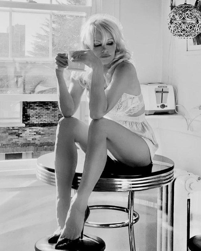 Пишногруда Памела Андерсон спокусливо позувала у мереживній білизні: гарячі фото - фото 426472