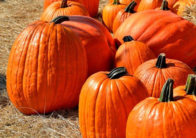 День осіннього рівнодення 2020: традиції та прикмети 22 вересня - фото 426588
