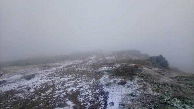 У Карпатах випав перший сніг: фотофакт - фото 427622