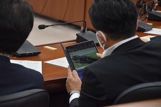 Депутат дивився відео про крокодила, поки у парламенті обговорювали важливі питання - фото 427639