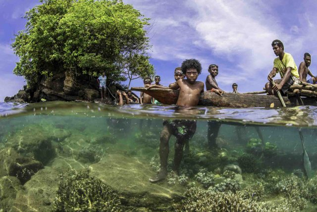 Унікальне місце на Землі: як виглядають мангрові ліси з багатим підводним світом - фото 427649