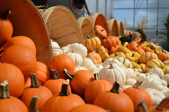 5 жовтня 2020 – яке сьогодні свято: традиції, заборони і прикмети - фото 428681