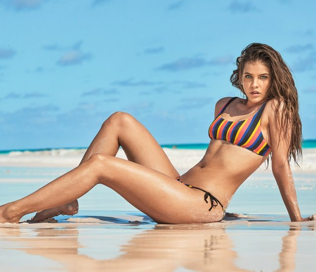 Як змінювалася найсексуальніша угорська модель Барбара Палвін: фото 18+ - фото 429561