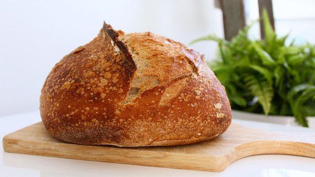 На що потрібно звернути увагу під час вибору хліба - фото 430092