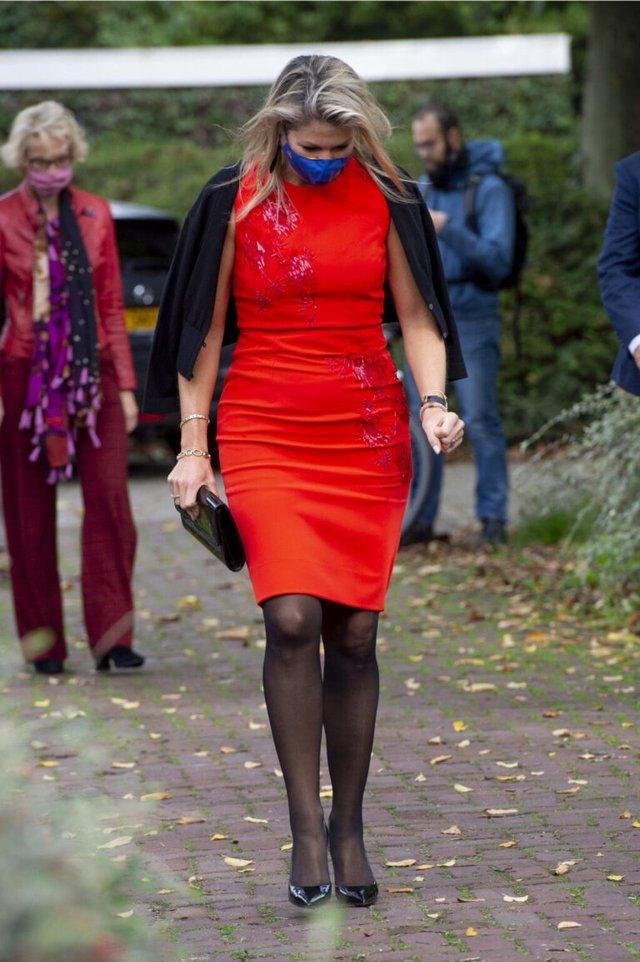 Королева Нідерландів прогадала з вибором сукні, обробленої стеклярусом - фото 430619