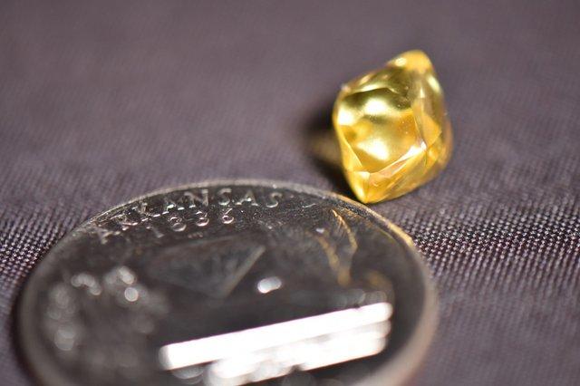 Американець після рясного дощу знайшов у парку великий алмаз: фотофакт - фото 433767
