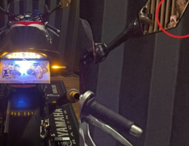 Популярна блогерка з Японії виявилася 50-річним байкером (фото) - фото 452057
