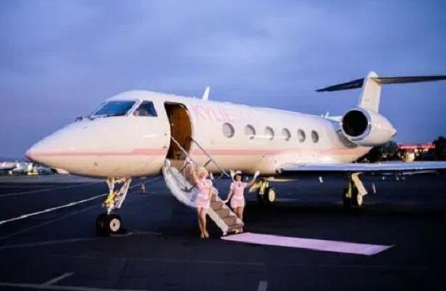 Як виглядає приватний літак наймолодшої мільярдерки світу: фото - фото 456277