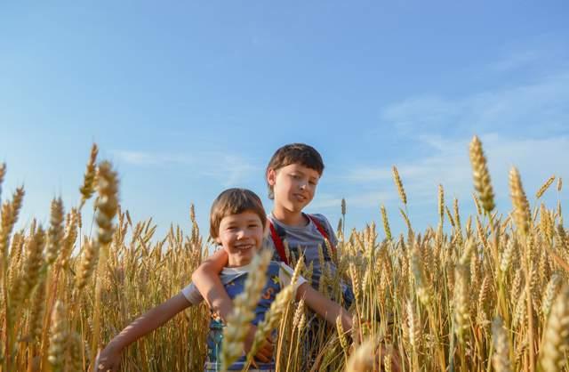 Твір про літо: Як я провів / провела літні канікули (10 прикладів) - фото 423283