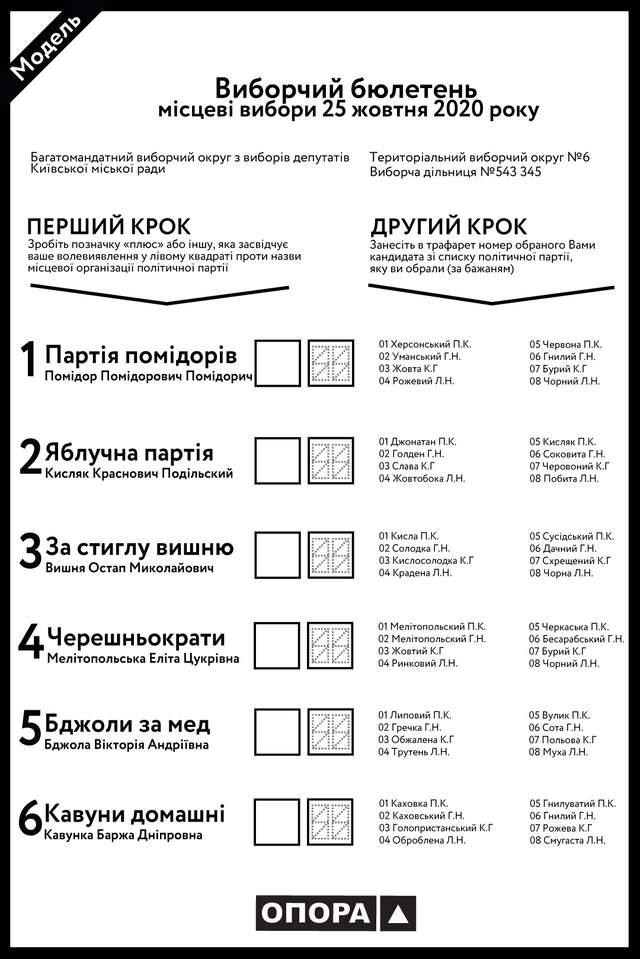 Бюлетень на місцевих виборах 25 жовтня 2020: інструкція, як заповнити - фото 431608